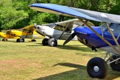 byrds airstrip carbon cubs