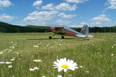 byrds airstrip cessna flower