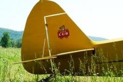 byrds airstrip cub tail