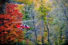 byrds airstrip gyro autumn